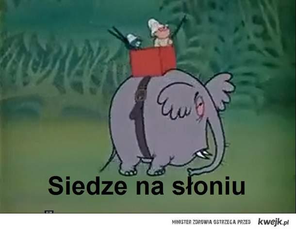 Siedze na słoniu
