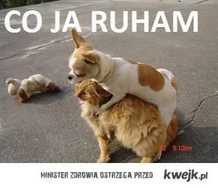 CO JA RUHAM?