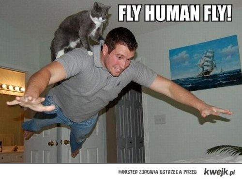 fly human fly