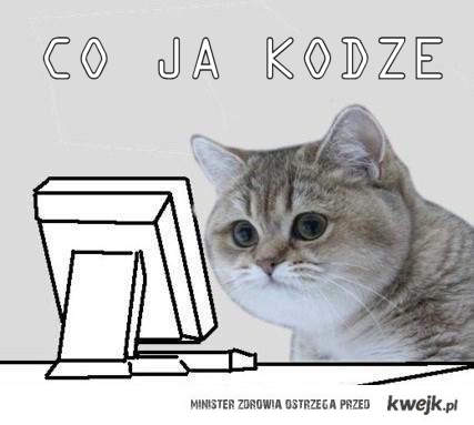 kot programistyczny