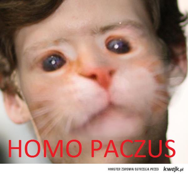 HOMO PACZUS