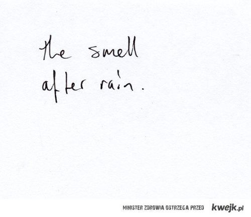 the smell after rain <3