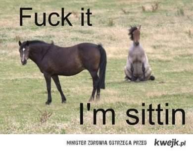siedzę