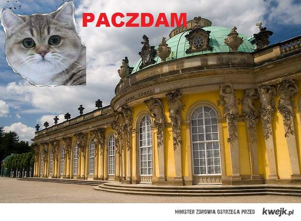 paczdameron