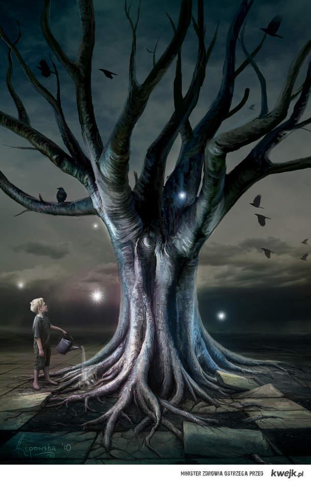 the tree keeper