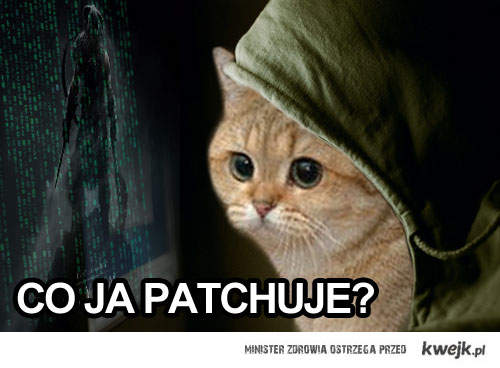 PATCHING CAT