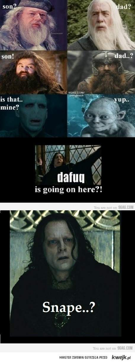 lotr and hp