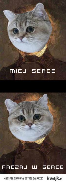 adam miaukiewicz