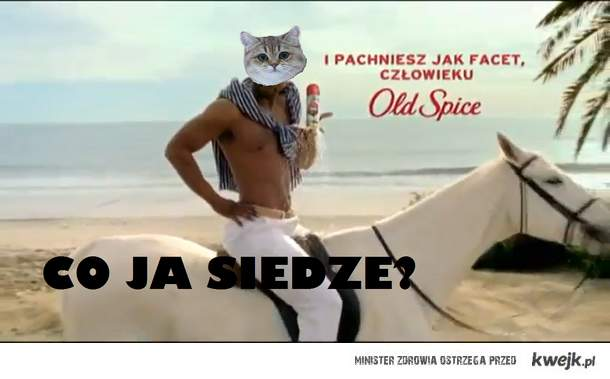 Co ja siedze?