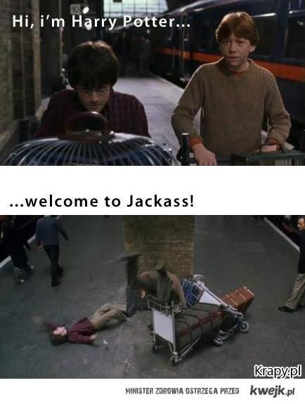 Potter Jackass