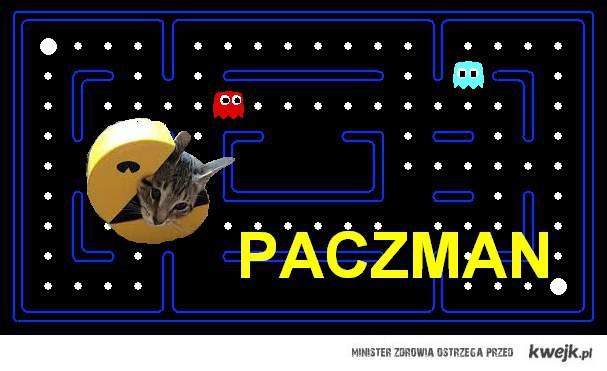 pac_man_cat_pacz