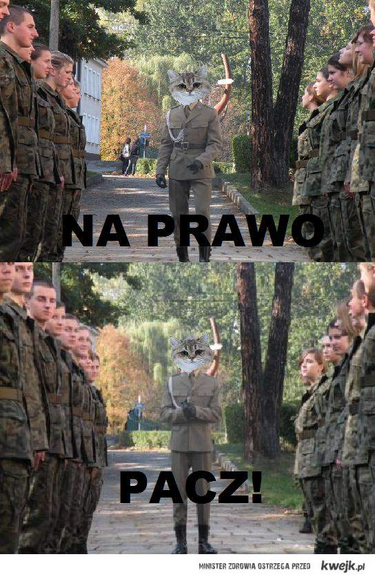 NA PRAWO PACZ!