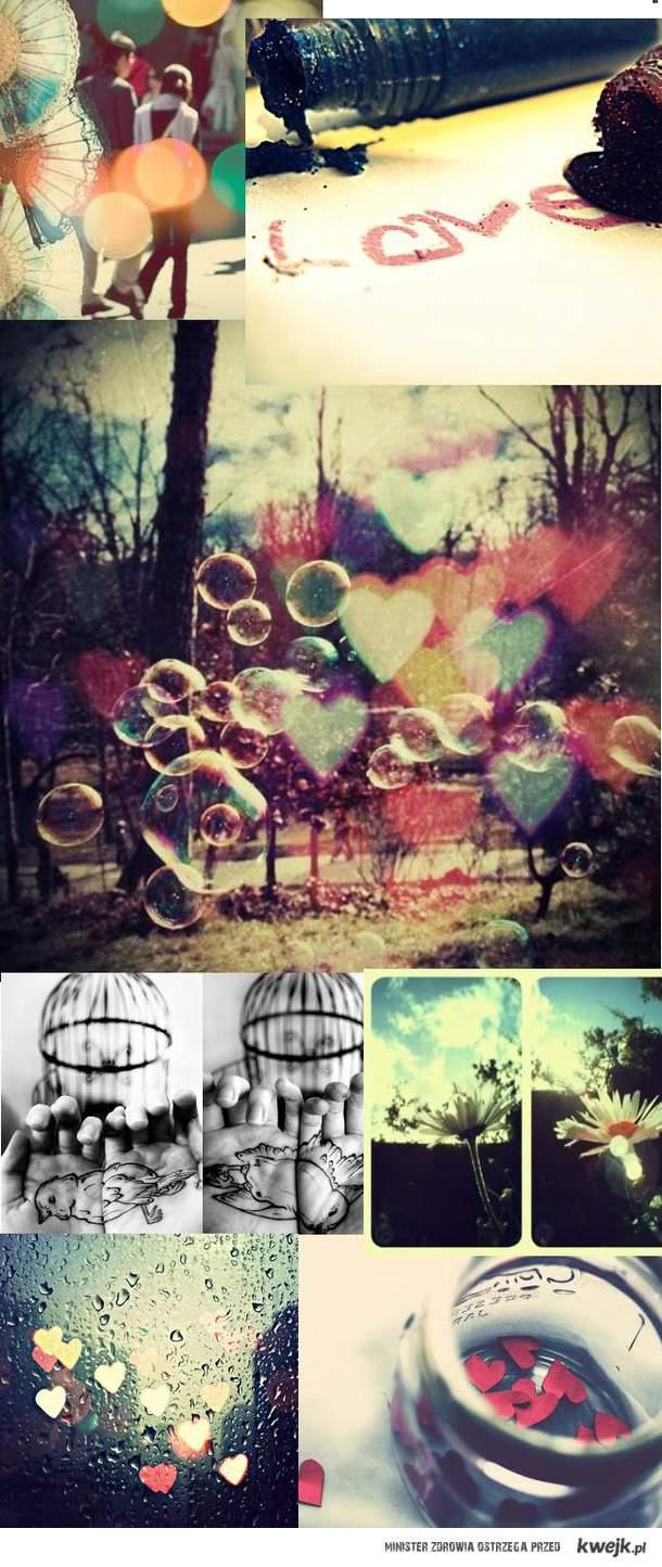 Piękne zdjęcia:D