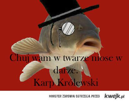 http://img835.imageshack.us/img835/2302/karpkrlewskiwieta.jpg