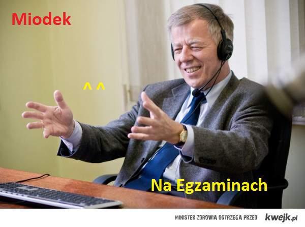 Egzaminy gimnazjalne z języka polskiego