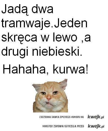 hahahaha,kurwa