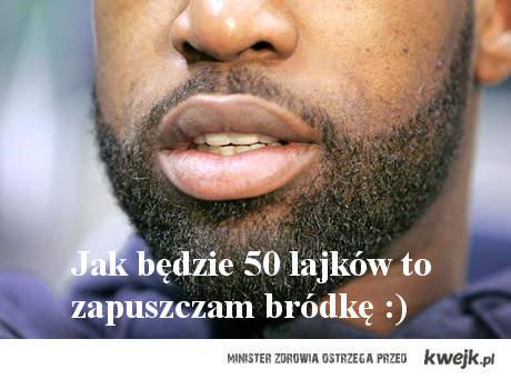 brodka