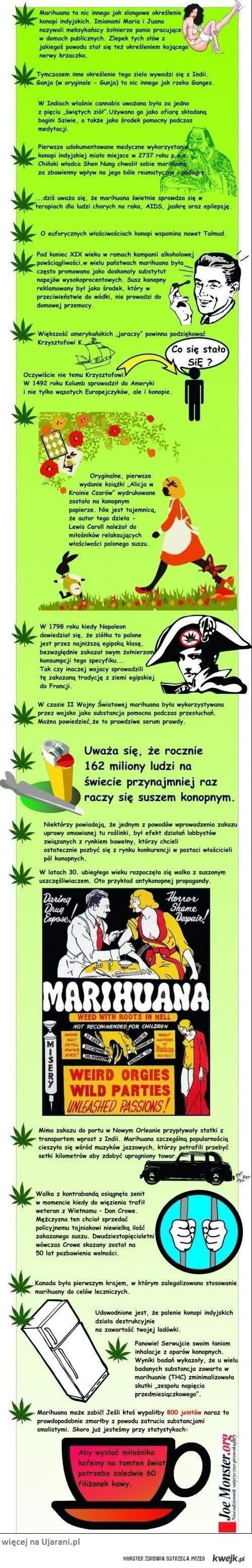 Ciekawostki o Marihuanie