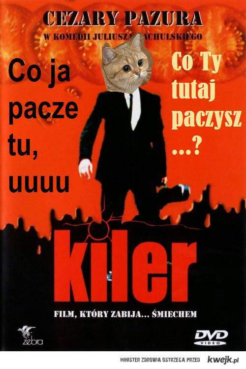 Pacze Kot :)