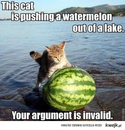 Kot z arbuzem