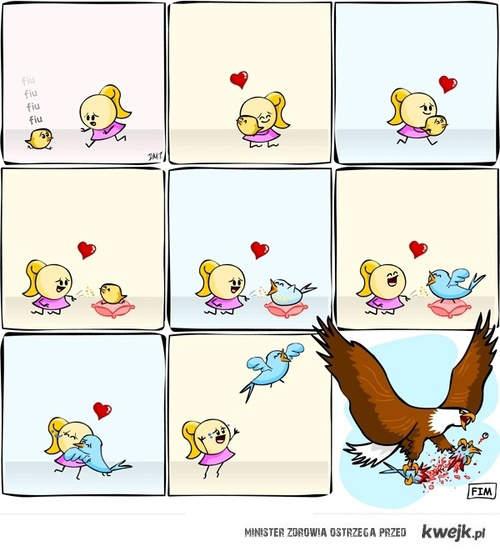 rozszarpany ptaszek
