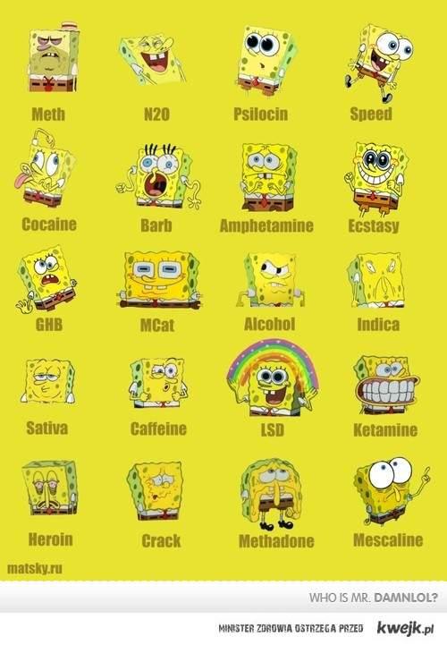 Sponge and drugs