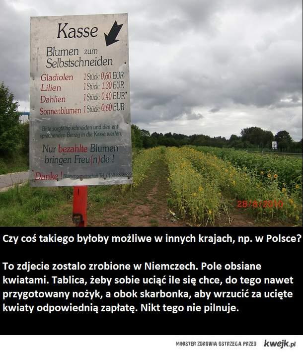Niemiecka uczciwość