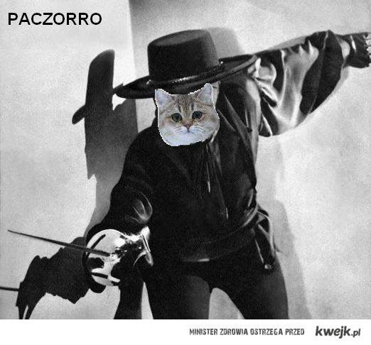 Paczorro