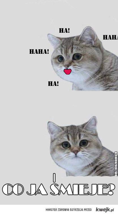 Co ja śmieje!?