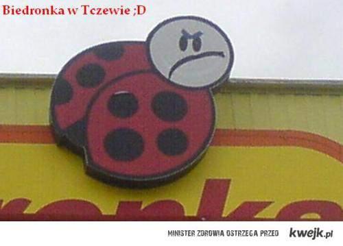 Tczewska Biedronka