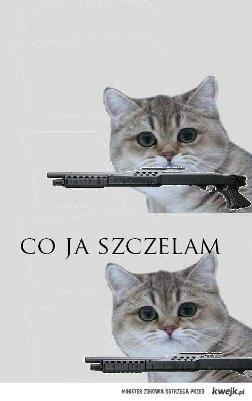 Cojaszczelam