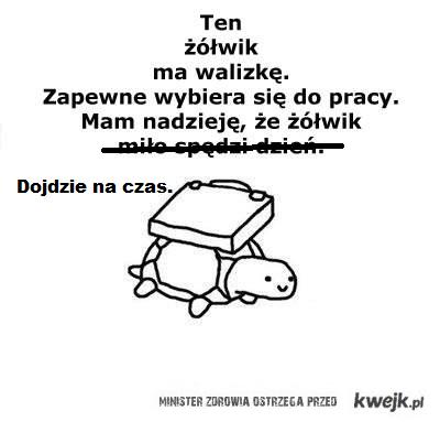 zolwik_dochodzi