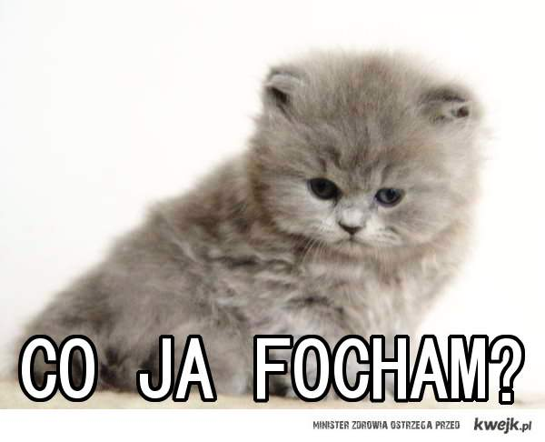 co ja focham