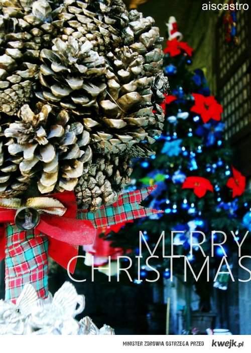 merry christmas everyone <3