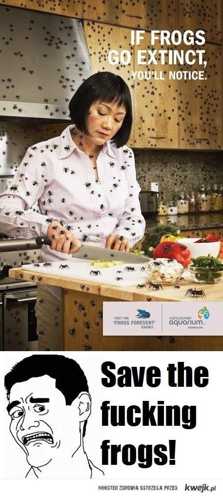 Ratujmy żaby