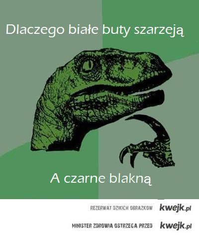 Dinobut