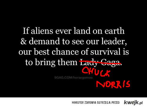 -Lady Gaga, +Chuck Norris