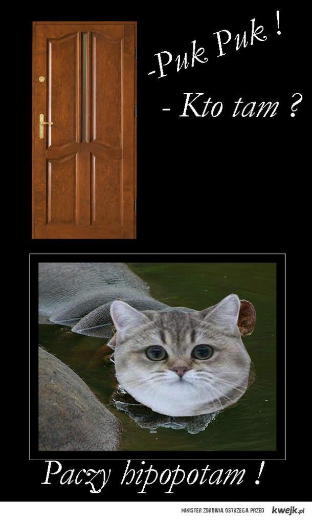 Kto tam ?
