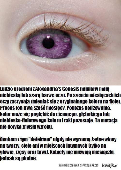 alexandria's genesis