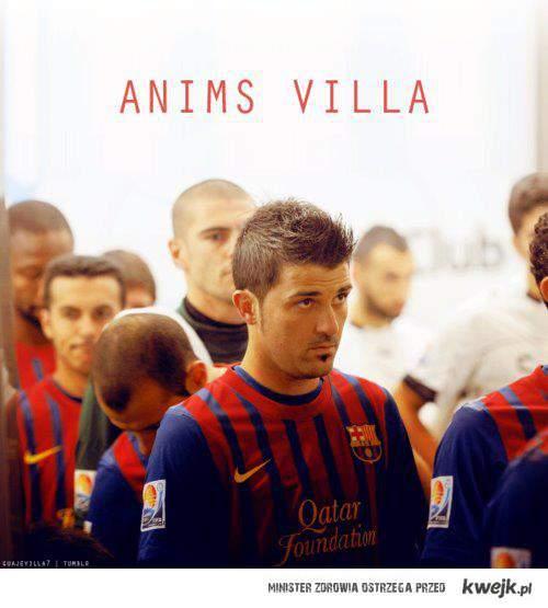 Anims!