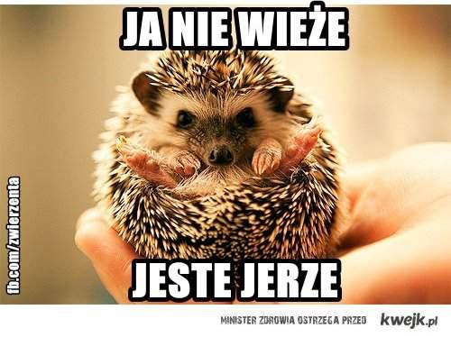 jerze
