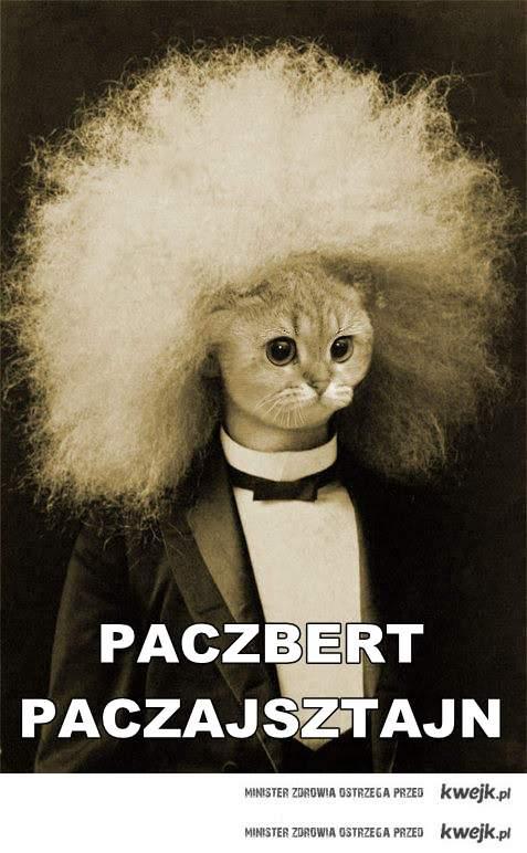Paczbert Paczajsztajn