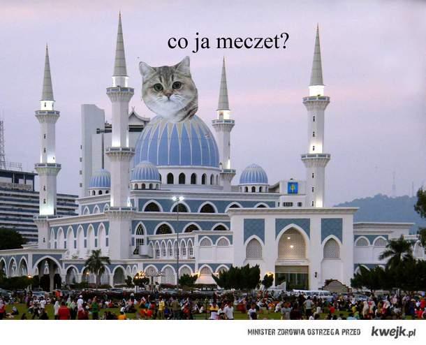 co ja meczet czyli próbne z historii :p