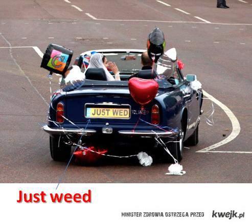 JustWeed