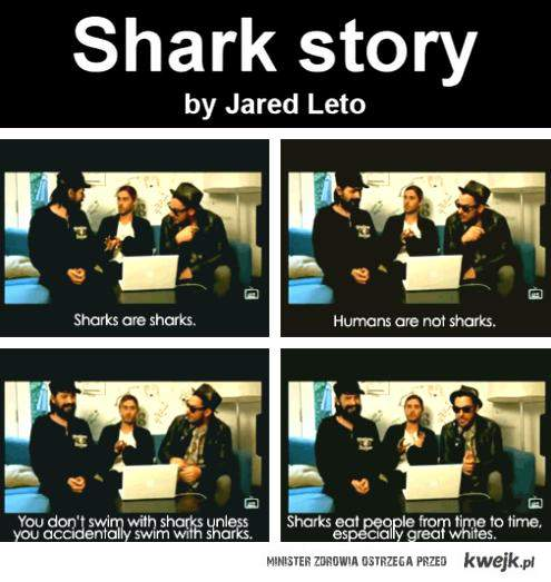 Shark Story by Jared Leto