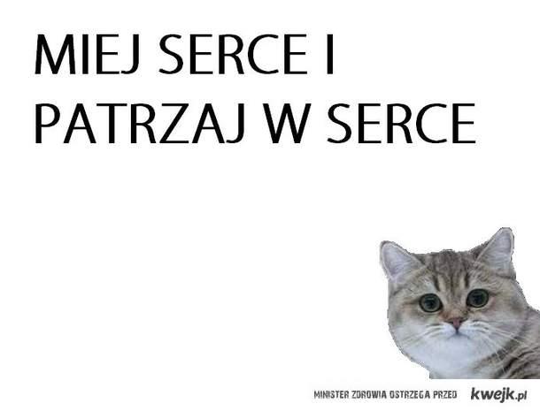 Kot Mickiewicz
