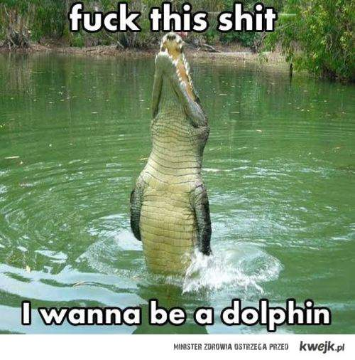 będę delfinem