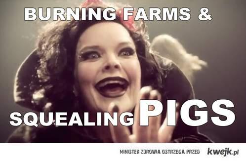 Skłiiiiiiiiiiiling PIGS!