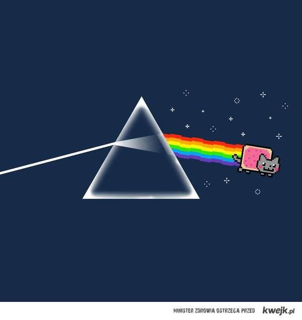 Nyan!