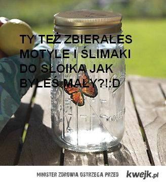 Motyle i ślimaki
